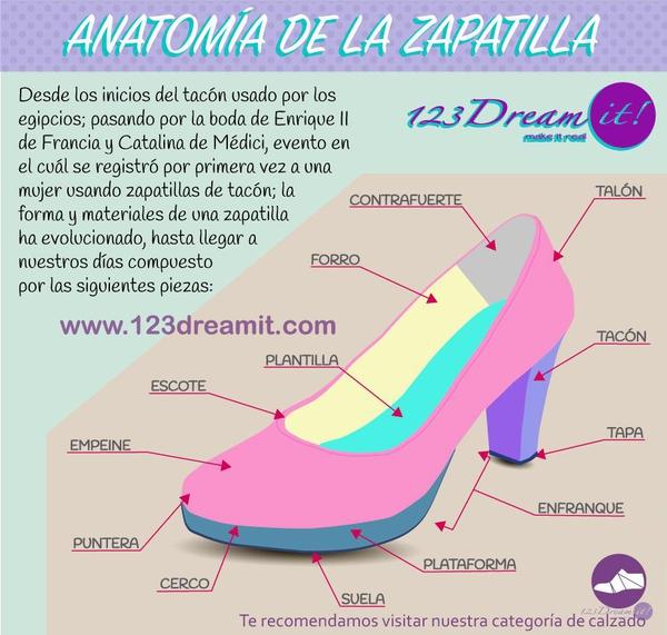 Anatomía de la zapatilla