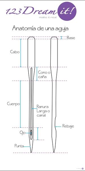 Anatomía de una Aguja
